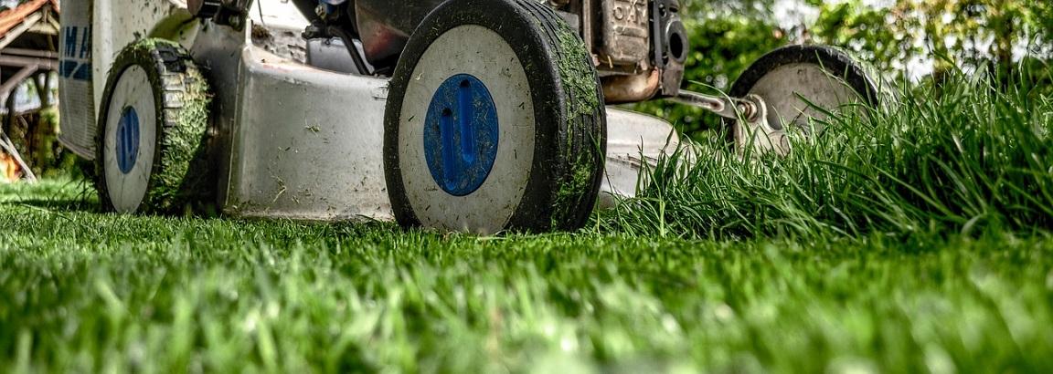 A lawn mower cutting the grass